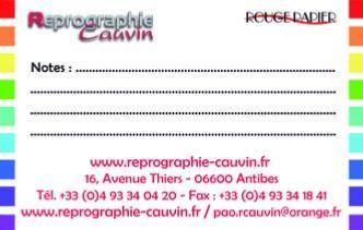 500 Cartes De Visites 350gr Recto Verso 85 X 54